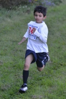 Cross Country Running - ACHS Fun Run 2013 (11 of 47)