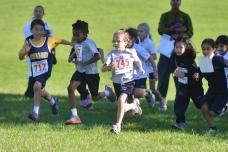 Cross Country Running - ACHS Fun Run 2013 (2 of 47)