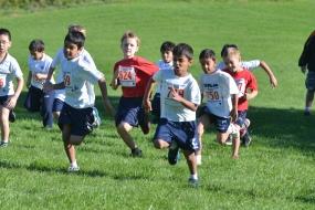 Cross Country Running - ACHS Fun Run 2013 (8 of 47)